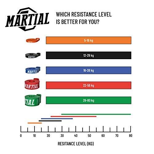 Preis-Leistungs-SIEGER bei vergleich.org: MARTIAL Resistance Bänder für optimales Training! Abbildung 2