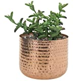 MyGift 6-inch Hammered Style Copper-Tone Metal Succulent Planter Pot