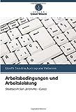 Arbeitsbedingungen und Arbeitsleistung: Stadtbezirk San Jeronimo - Cusco (German Edition)