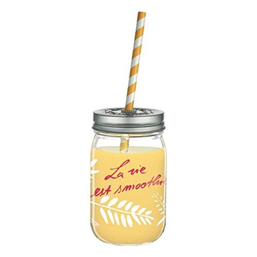 RITZENHOFF Make It Take It Smoothie Barattolo in vetro di Jutta Bücker, 450 ml, con due cannucce biologiche colorate e due coperchi a vite