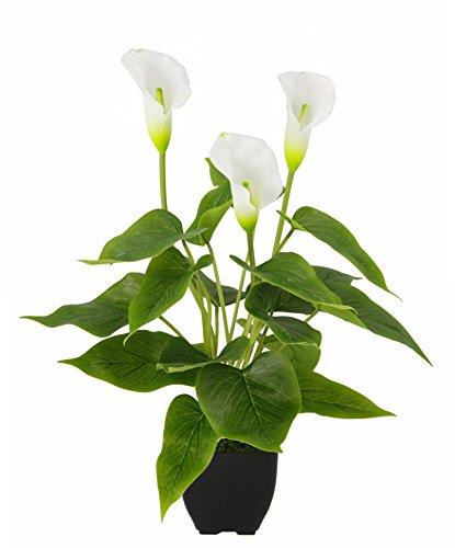 Flair Flower Callapflanze i.T. , Polyester, Kunststoff, Weiß, 42 x 20 x 20 cm