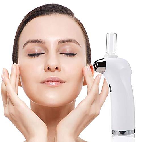 ZZYYZZ Vapeur Visage Sauna Facial, Le pulvérisateur Facial portatif de Soin de Peau d'hydratation de Poche Peut être chargé