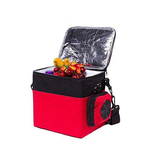 QIHANGCHEPIN Bolso portátil del congelador del Viaje de la conexión del Coche 6L, pequeño refrigerador Multifuncional portátil Ligero con 12V Car Cable Que Carga para Acampar, Viaje de la Playa
