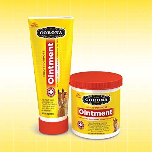 Corona Ointment for Horses | Lanolin-Based Formula Helps Sooth Irritation | 7 Ounces