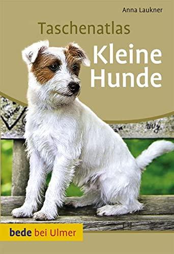 Taschenatlas Kleine Hunde (Taschenatlanten)
