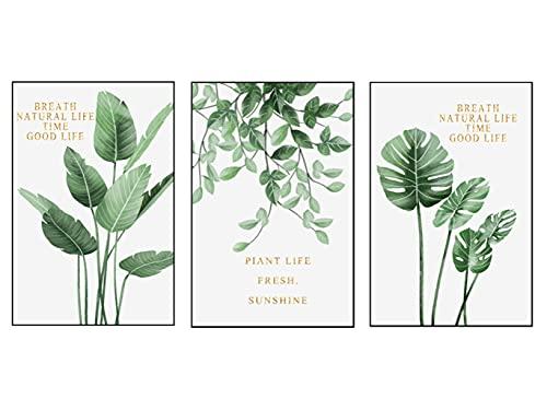 3 Pezzi Stampa su Tela di Piante da Parete (30x40 cm),Pianta Acquerello Foglie Verdi Tela Pittura Eleganti Pianta delle Foglie Verdi Immagine Pittura Tela Wall Art Regalo ,Senza Cornice