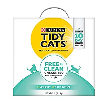 Purina Tidy Cats Clumping Cat Litter  Free & Clean Unscented Multi Cat Litter - 40 lb Box