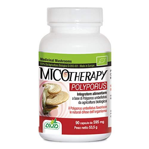 Micotherapy Polyporus 90 Cápsulas