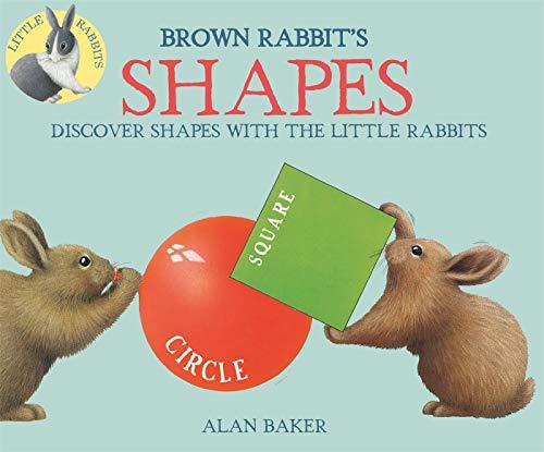 Brown Rabbit's Shapes (Little Rabbit Books)