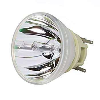 Original Philips Projector Lamp Replacement for Optoma HD27HDR  Bulb Only