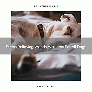 Stress Relieving Woods Whispers For All Dogs