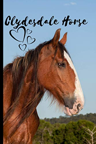 Clydesdale Horse Notebook For Horse Lovers: Composition Notebook 6x9' Blank Lined Journal