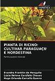 PIANTA DI RICINO: CULTIVAR PARAGUAÇU E NORDESTINA: Fertilizzazione minerale