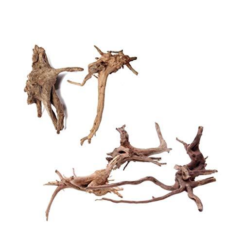5個入り 自然流木 水族館シンクエイブル流木水槽の装飾 (小 10-15cm)