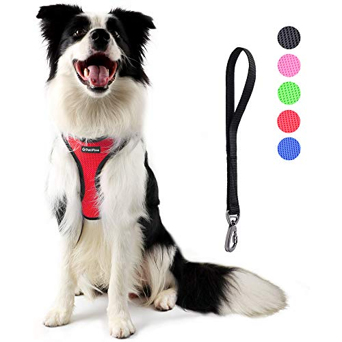 PetiFine Dog Harness with Car Safety Seat Belt, Adjustable Breathable Air Mesh Puppy Vest Harness for X- Small/Small/Medium/Large Dogs & Cats(L, Red)