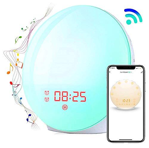 Wecker, Wake Up Light Wecker mit Simulation von Morgen und Alarm, Dual-Alarm, Snooze-Funktion, 20 Helligkeit, 8 Töne, FM Radio, LED Lampe mit 1 USB-Port, Adapter, Kabel [Energieeffizienzklasse A]