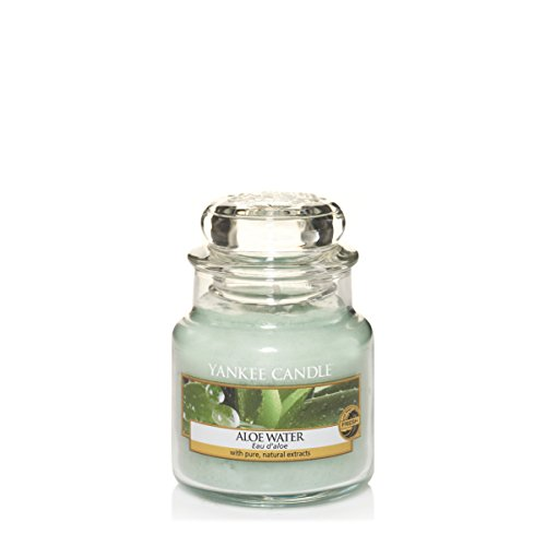 Yankee Candle 1332178E Aloe Water Kleines Jar