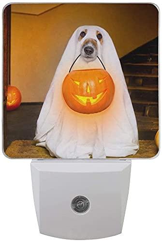 Lámpara de sensor para dormitorio, espeluznante y espeluznante Halloween perro fantasma con linterna de calabaza luz nocturna juego de 2 luces LED enchufables para noche de noche