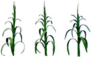 "JTT Scenery Products Flowering Plants, Corn Stalks, 1"""