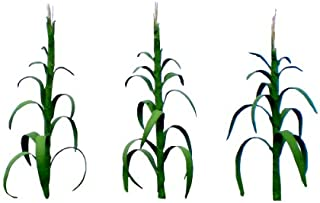 JTT Scenery Products Flowering Plants, Corn Stalks, 1""