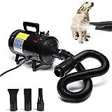 Best Dog Dryers - dicn 2800W Dog Hair Dryer Blaster Pet Grooming Review