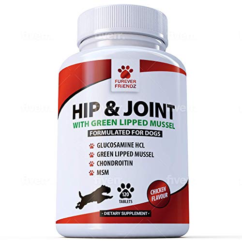 Advanced Hip and Joint Support for Dogs - Glucosamine, Chondroitin, MSM & GREEN LIPPED Mussels & Vitamin C - Canine 120 Chicken Flavoured Tablets - Chewable Supplements • Furever Friendz