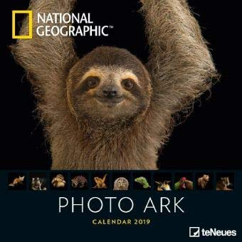 Photo Ark - Broschurkalender - Kalender 2019 - teNeues-Verlag - National Geographic - Wandkalender mit faszinierenden Tieren und Platz für Eintragungen - 30 cm x 30 cm (offen 30 cm x 60 cm)