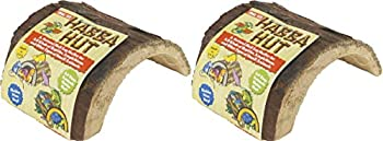 Zoo Med Habba Hut for Terrariums [Set of 2] Size  Small  3.5  L x 4.5  W x 2.5  H
