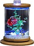 AY Mini tanque de peces autocimíes Ecología de escritorio Acuario LED LED CULTOS CUBIERTE CUBO CUBO Forma en forma de acuario Kit con un cambio de agua conveniente, DIY Tanque de pescado giratorio cre