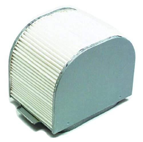 Hiflofiltro HFA4609 Premium OE Replacement Air Filter, Black