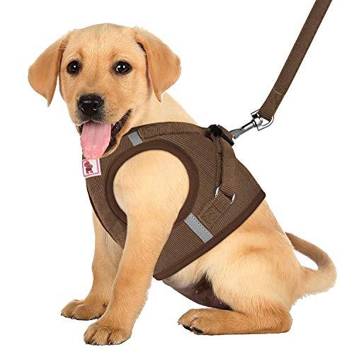 XIAO Arnés para Perros Sin Tirón Caminar Confort Comodidad Acolchado Chaleco Arneses Arnés Reflectante Ajustable Arneses para Mascotas Adecuadas para,Brown,XS
