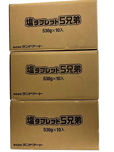 3ケース(30袋)まとめ買い ランドアート 塩タブレット5兄弟 (530g×30袋) 塩分補給 熱中症対策
