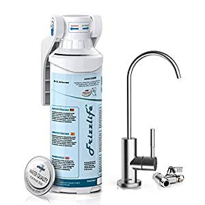 Best under sink water ionizer
