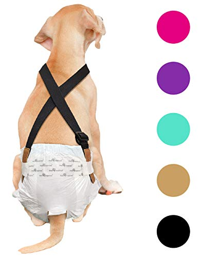 Dog Diapers With Suspenders Male