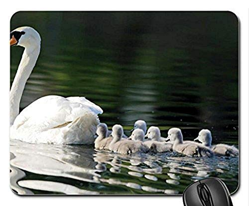 Gaming Mouse pad mousemat White Mother Swan and Little Ones Mouse Pad, Mousepad (Birds Mouse Pad)