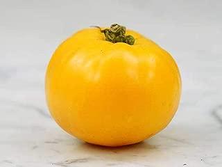 Mountain Gold Tomato Seeds (100 Seeds)
