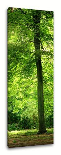 PIX Visions Leinwand Bilder Leinwandbilder Bild Wandbild XXL Hochformat Bam Wald Landschaft Natur Wildnis Grün Kunstdruck FotodruckDekoration Art Digital Print Foto