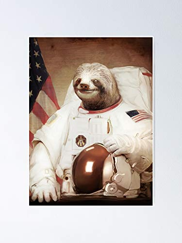 Axescott Astronaut Sloth Poster