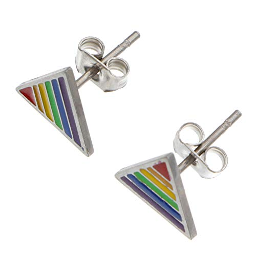 Holibanna Stainless Steel Rainbow Ear Stud Earring Lgbt Jewelry Gay Lesbian Pride Gift For Gay Lesbian Pride Present