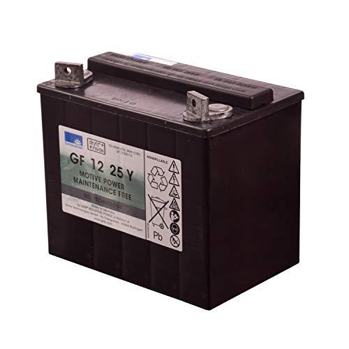 Sonnenschein GF 12 25 V Gel Batterie 12V 25Ah Akku Industriebatterie 700 Zyklen
