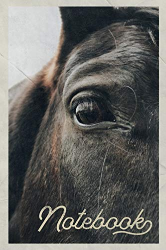 Notebook: Caballo Viejo Nifty Composition Book Journal Diary for Men, Women, Teen & Kids Vintage Retro Design for notes on horse race betting strategies
