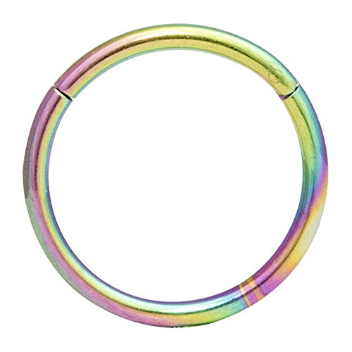 GDYX Nose ring Hypoallergenic Nasal Ring 316l Surgical Steel Hinge Segment Ring Body Pierced Jewelry Earrings 8G(3.0mm) x 16MM Rainbow