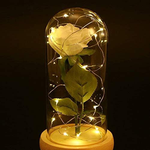 Tcg Bright Colors and Safety Lights White Silk Rose in A Glass,led Fairy String Lights,Fairy Lights for Bedroom, for Bedroom Used Indoors Or Outdoors Simple Furniture Decoration