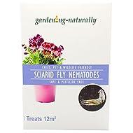 Sciarid Fly Nematodes Fungus Gnat Compost Fly Organic Natural Killer Treatment Treats 12.sqm