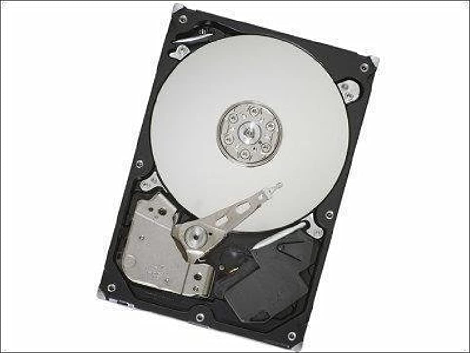 ショップ批判するレイアウトSeagate ST1000NM0023 1TB SAS 3.5インチ HDD [並行輸入品]