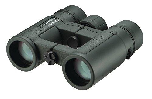 Eschenbach Optik Fernglas sektor D 8x32 compact+, wasserdicht, robust, grün