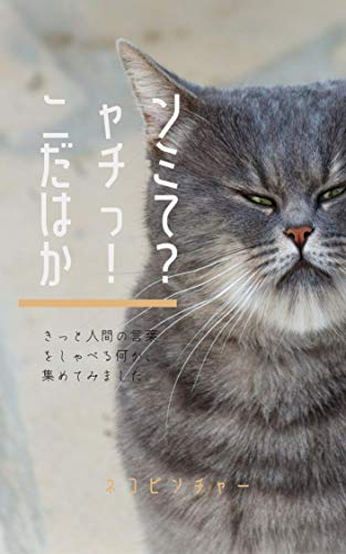 nyanda chimi ha tteka: Collection of cat-ish something nyanda chimi ha tteka series (Japanese Edition)