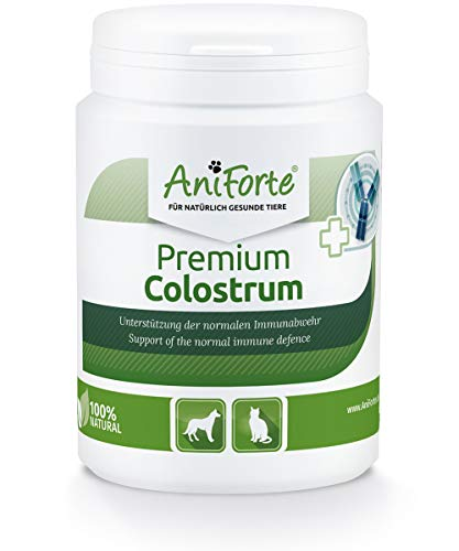 AniForte Premium Colostrum für Hunde & Katzen 100g Pulver - Natürliche Erstmilch, unterstützt Abwehrkräfte & Magen-Darm-Trakt, Immunglobulin G in Lebensmittelqualität, Kolostrum für Katzen & Hunde