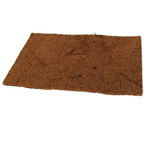 perfk Kokosmatte Kokosteppich Kokosnuss Substrat Matte für Schildkröten, Eidechsen und andere Reptilien - 60x40cm