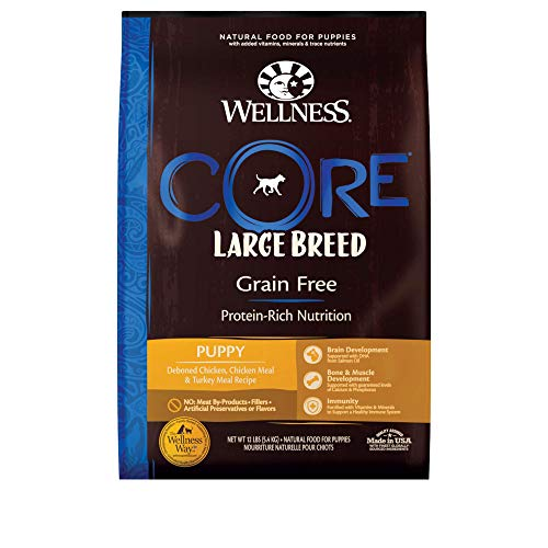 Wellness Natural Pet Food CORE Natural Grain...